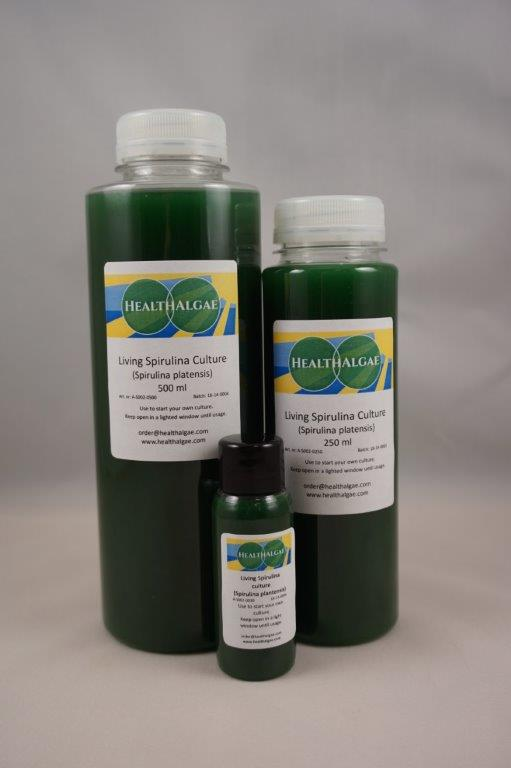 HealthAlgae Spirulina platensis starter culture 30 ml with grow manual. Grow your own