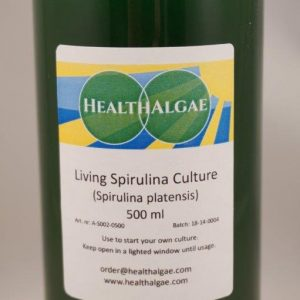 Fresh and Living Spirulina platensis algae start culture (500 ml) for the home growing of Spirulina – Spirulina culture starter